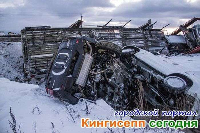 У Ленобласті автовоз перекинув шість новеньких кросоверів (20 фото)