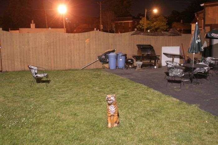 Життя людей з околиць Детройта (33 фото)