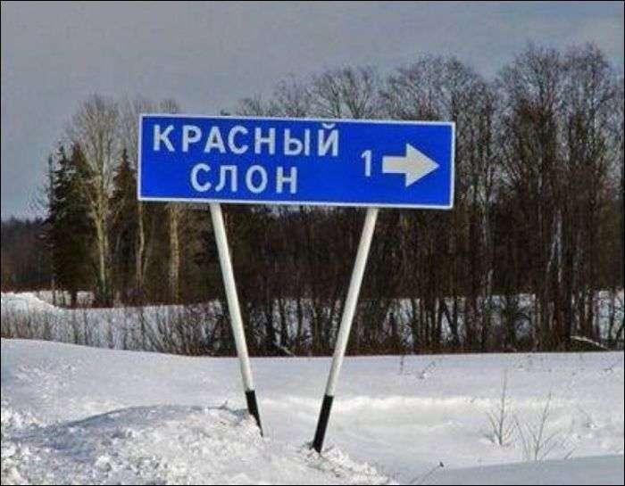 Через аномально теплої погоди закрили льодове містечко (22 фото)