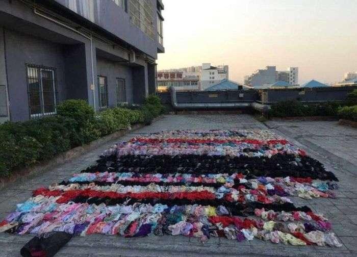 Злодій зберігав 2000 предметів жіночої нижньої білизни над стелею (6 фото)