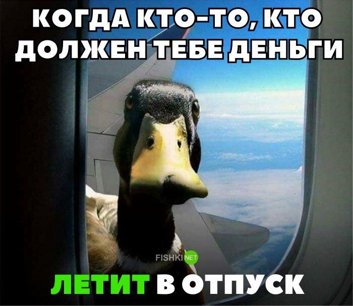 30 смешных мемов про путешествия и путешественников путеествия, Путешествие и отдых