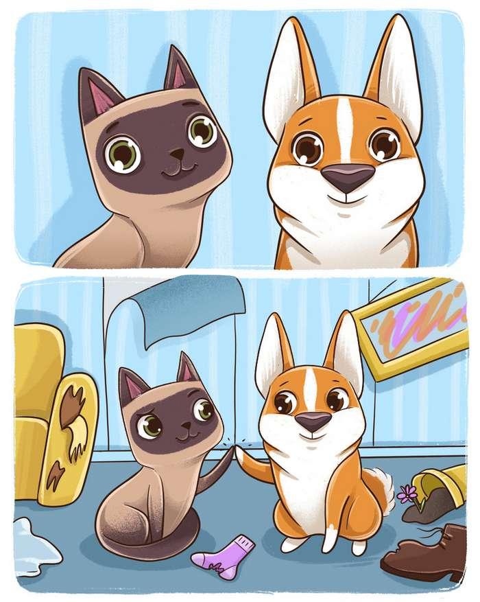 Комикс отом, почему собаки икошки все-таки сразных планет Интересное