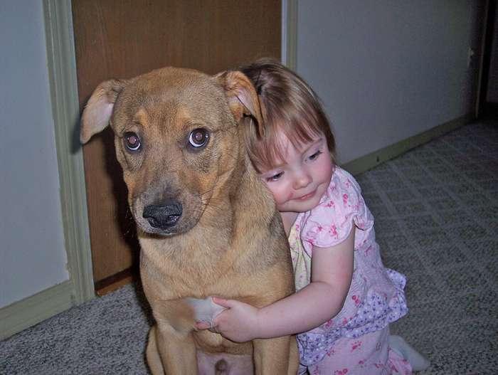 10вещей, которые нелюбят собаки, амыпродолжаем это делать Интересное