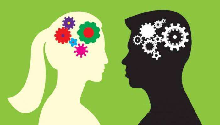 Чем отличается мозг мужчин и женщин: последние исследования Интересное
