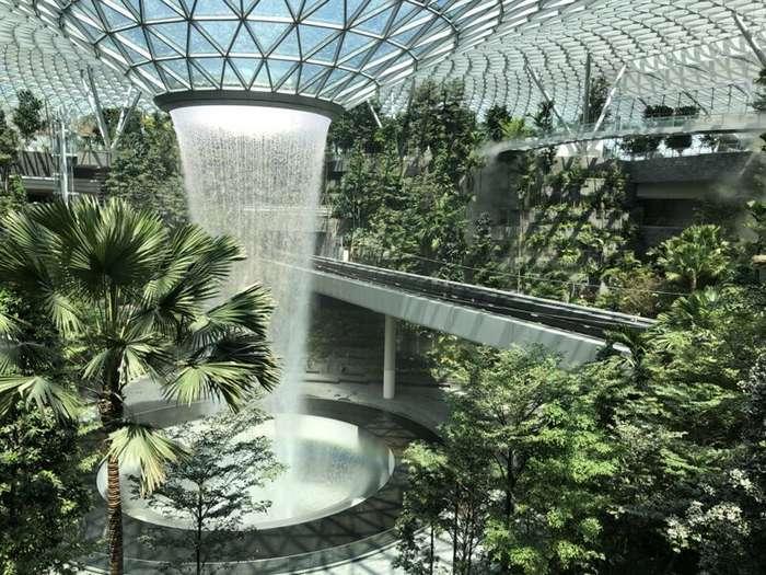 Тропический лес и 40-метровый водопад: открытие нового комплекса аэропорта Чанги интересное