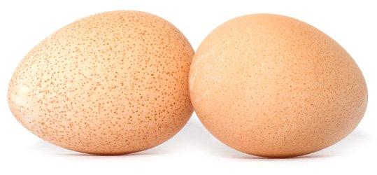 Сравнение яиц домашней птицы по вкусу, питательности и пользе питание