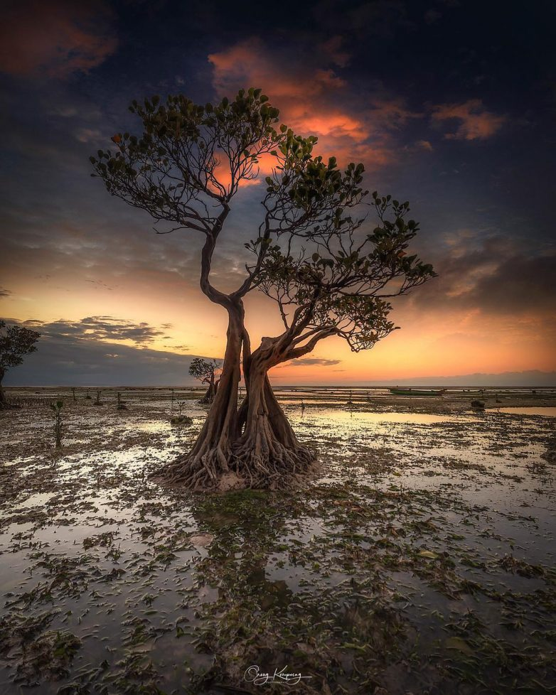 Страна-загадка: экзотическая Индонезия на фото