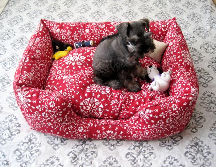 Шьем лежанку для собачки. Мастер-класс мастер класс