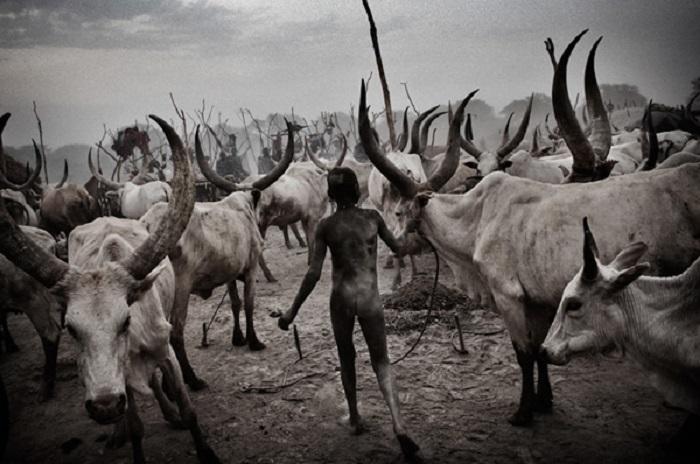 О чем рассказывают атмосферные фотографии лучших документальных фотографов современности современные