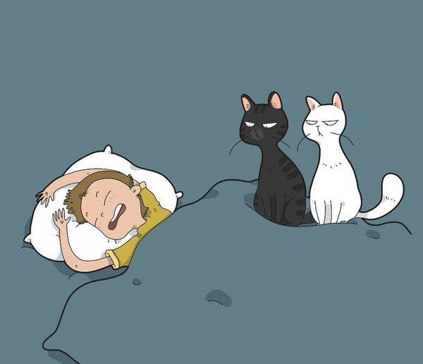 Типичная Жизнь Кота. Дневник Кота Васи картинки