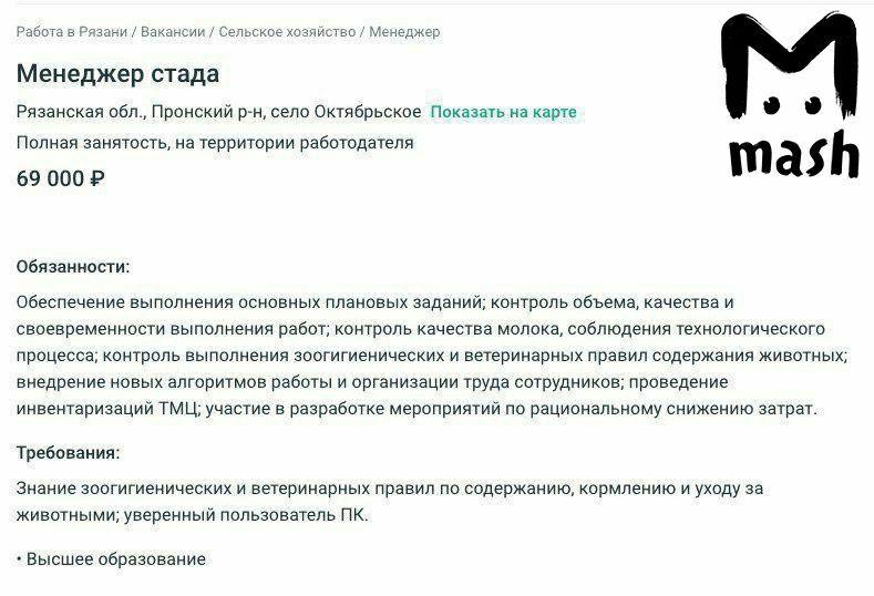 В Рязанской области на вакансии доярок и скотоводов ищут