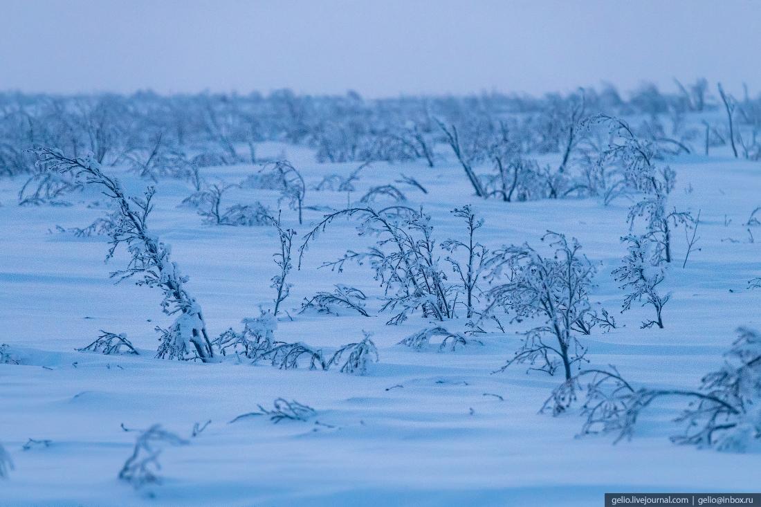 Поиск и разведка нефтегазовых месторождений на Крайнем Севере геология
