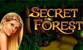 Гральний апарат Secret Forest: грати на гроші та безкошновно